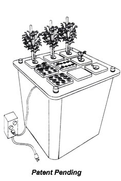Aeroponics-drawing of growing system