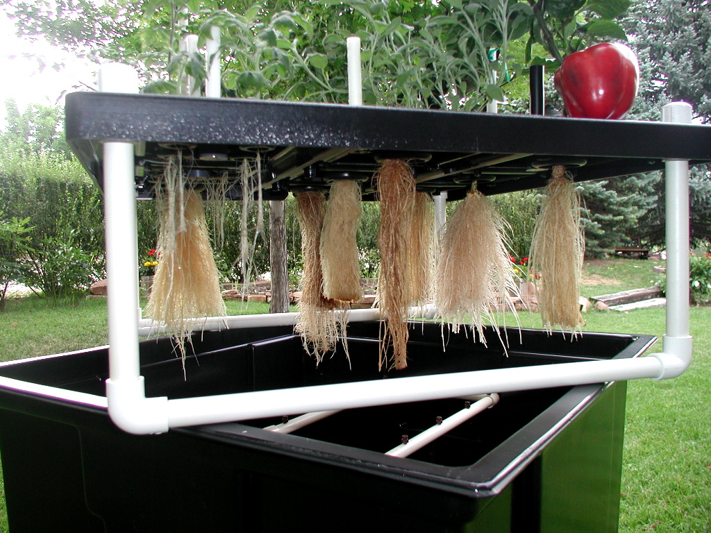 Aeroponics-healthy air grown roots